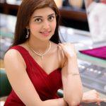 Pranitha Subhash Net Worth 2021